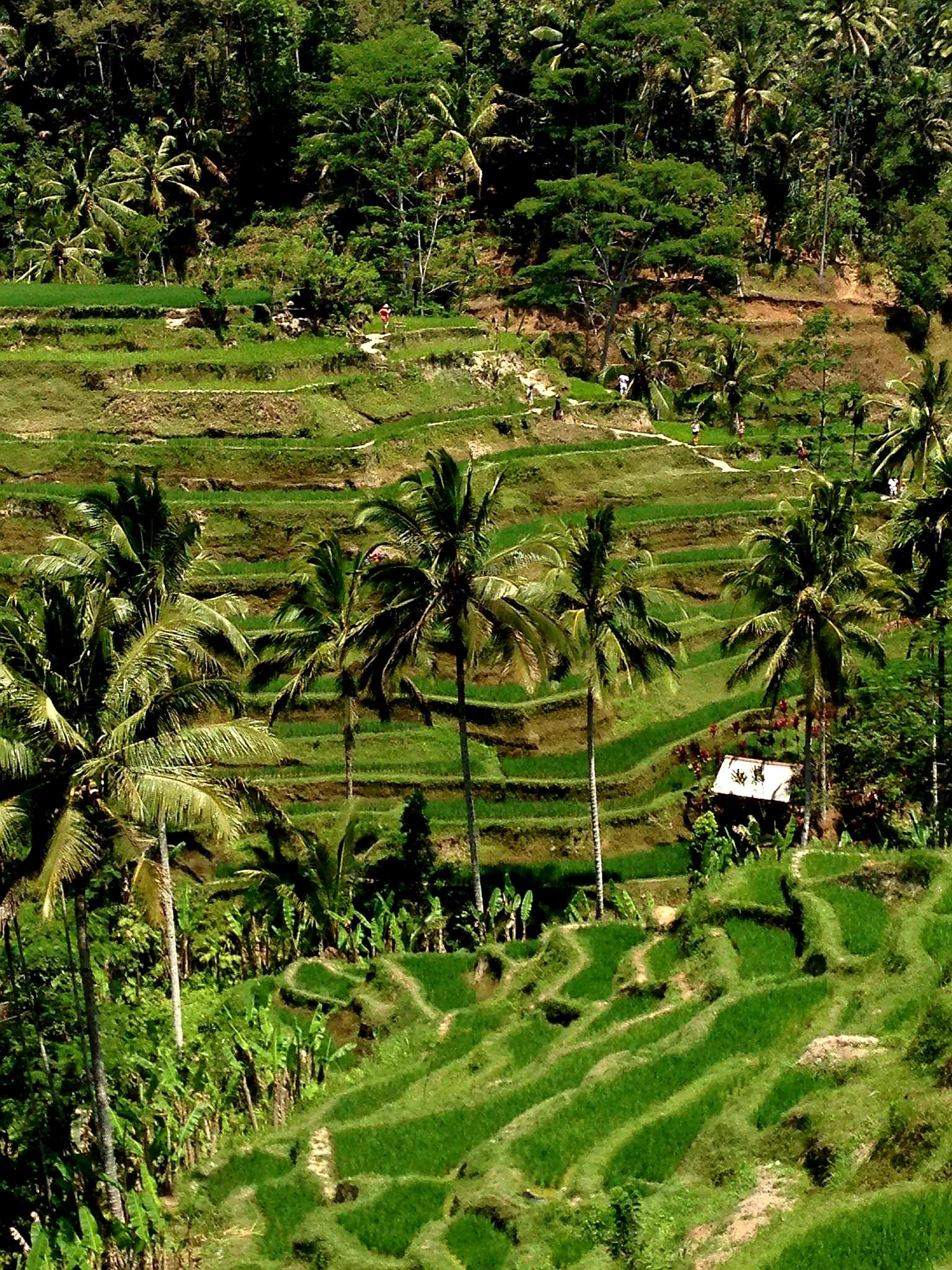 Candidasa, Bali's Hidden Gem